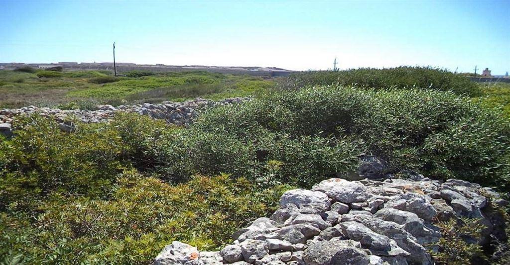Peninsula on Menorca on sale