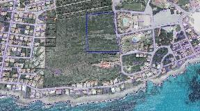 Huge rustic plot with 3,6 ha in Punta Prima