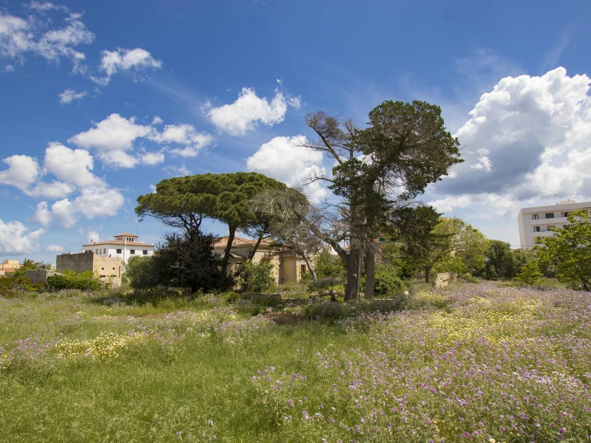 INVESTMENT PROPERTY - Unique project for the realization of a private nursing home in Menorca,